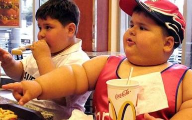 gordo 1