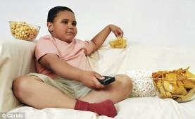 gordo 3